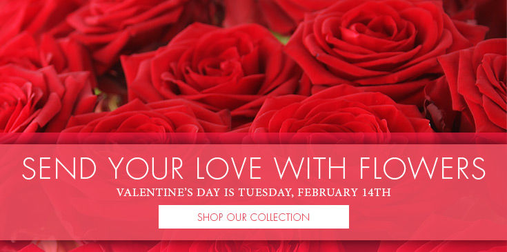 Valentine's Day Flowers & Gifts Delivered by Bice's Florist Fort Worth, Texas.